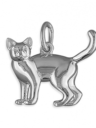Sterling Silver Cat pendant on an 18